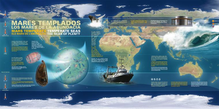 Infografía Mares Templados L'Oceanogràfic