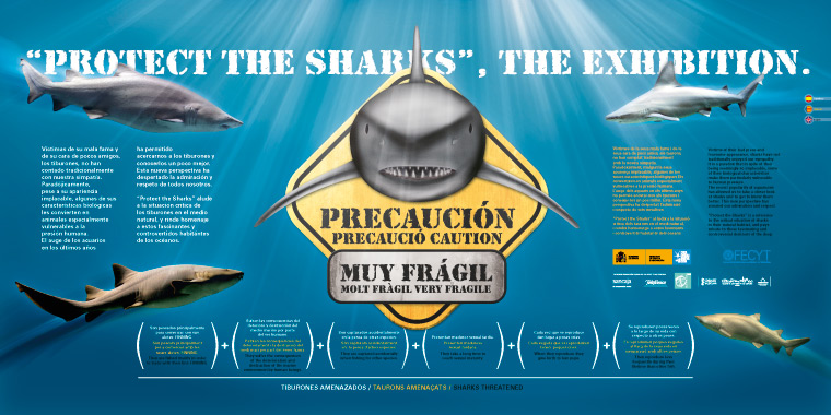 Protect the sharks. The exhibition. L'Oceanogràfic.